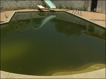 Green Pool Clean up in Phoenix Airzona Green Pool | Phoenix ...